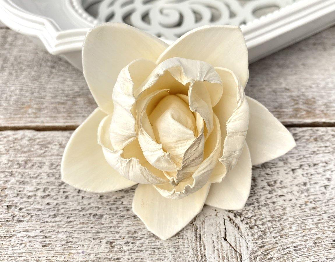White Pearl Sola Wood Flower - JOYNAGAR