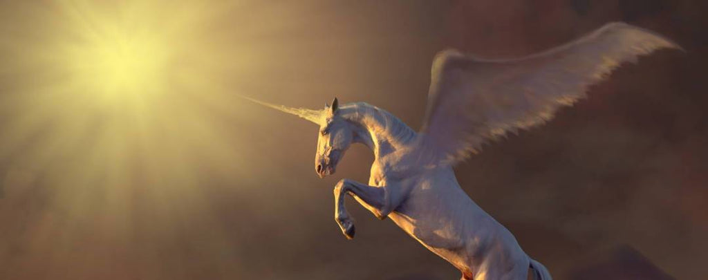 the Unicorn and Bible