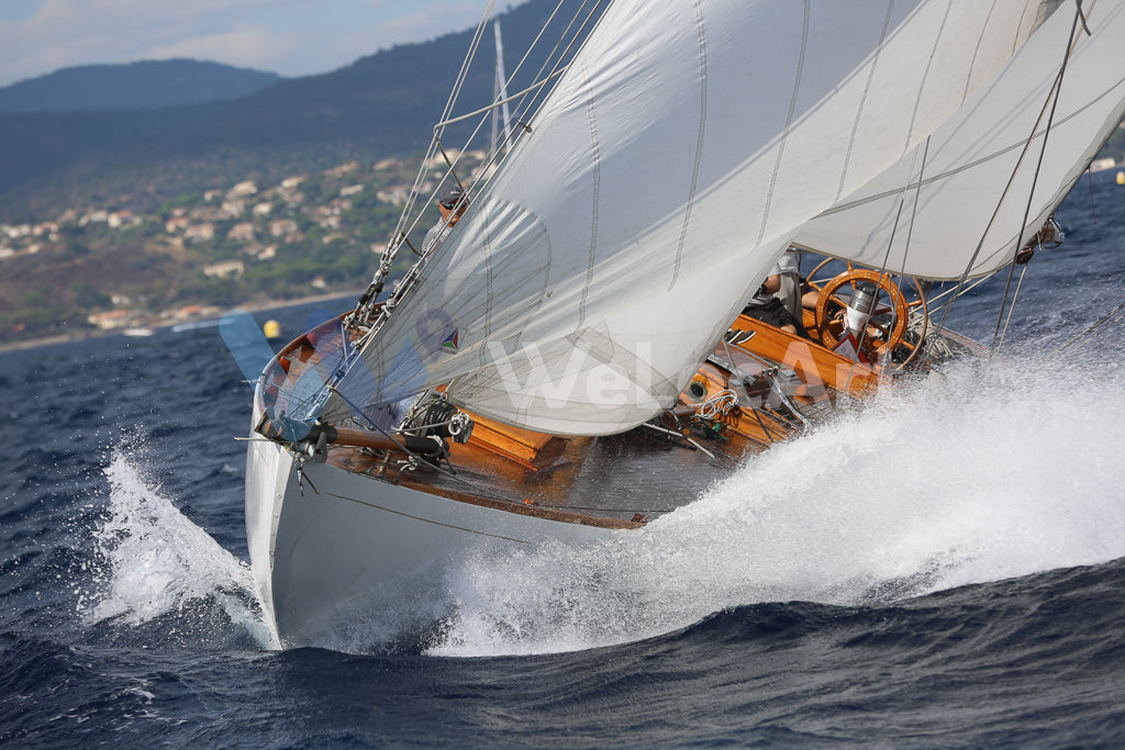 Voiles - Blanches n°4
