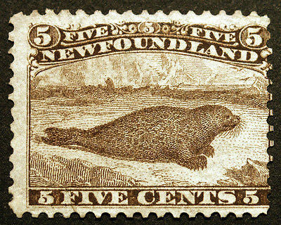 Newfoundland #25 5c Brown Beaver 1865-94 perf 12 Faintly Used? Rich Rare