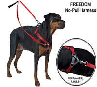 2 Hounds Freedom Harness  Assorted Colors