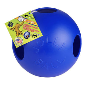 Teaser Ball  Assorted Sizes and Colors