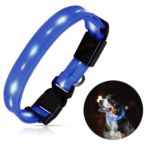 Blue Colored Led Dog Collar Tags - Wildog