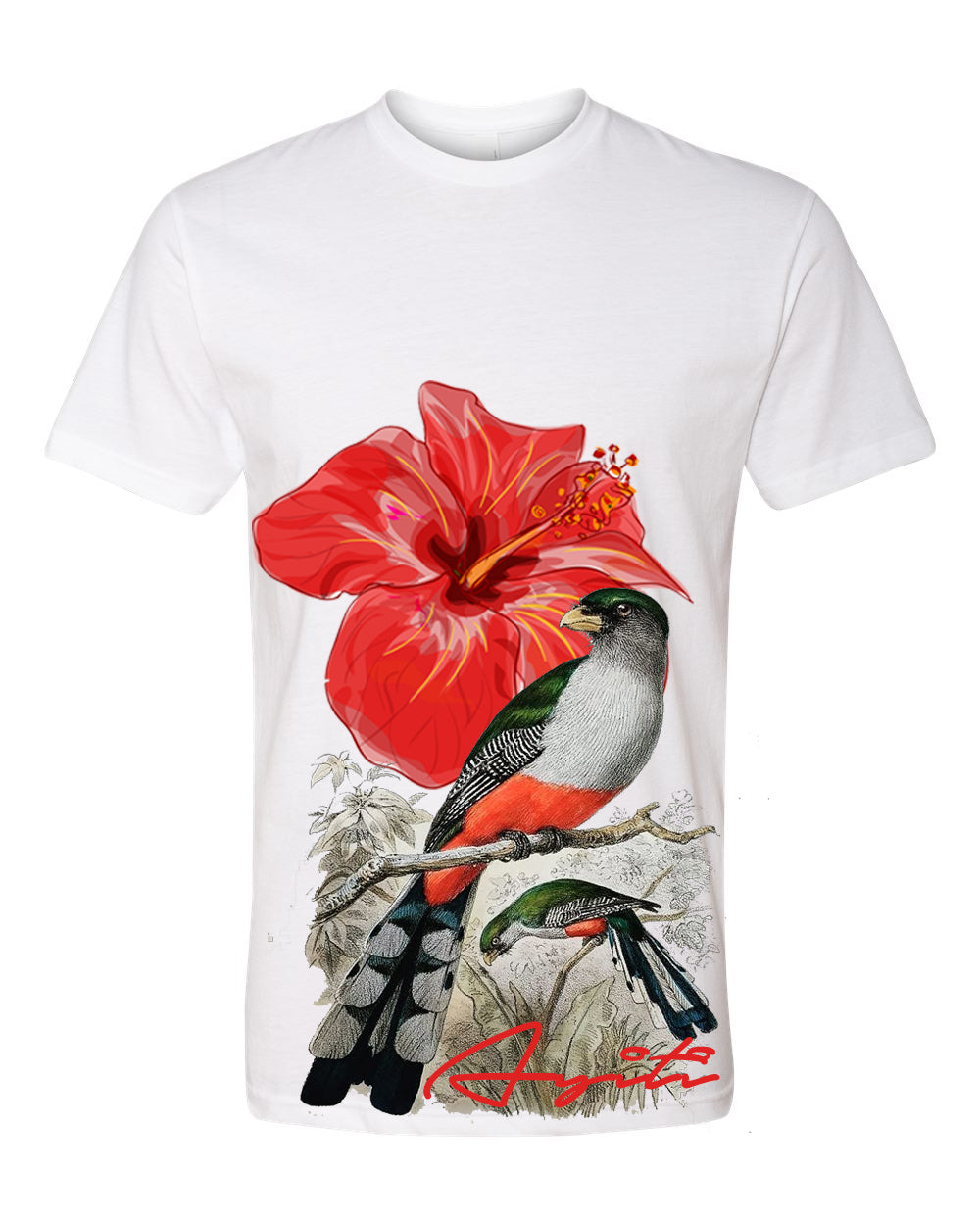 HISPANIOLAN TROGON-HIBISCUS FLOWER