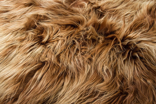 "48"" x 72"" x 2"""" Fox Sheepskin Long-haired - Area Rug"