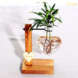 Glass and Wood Vase Planter Terrarium