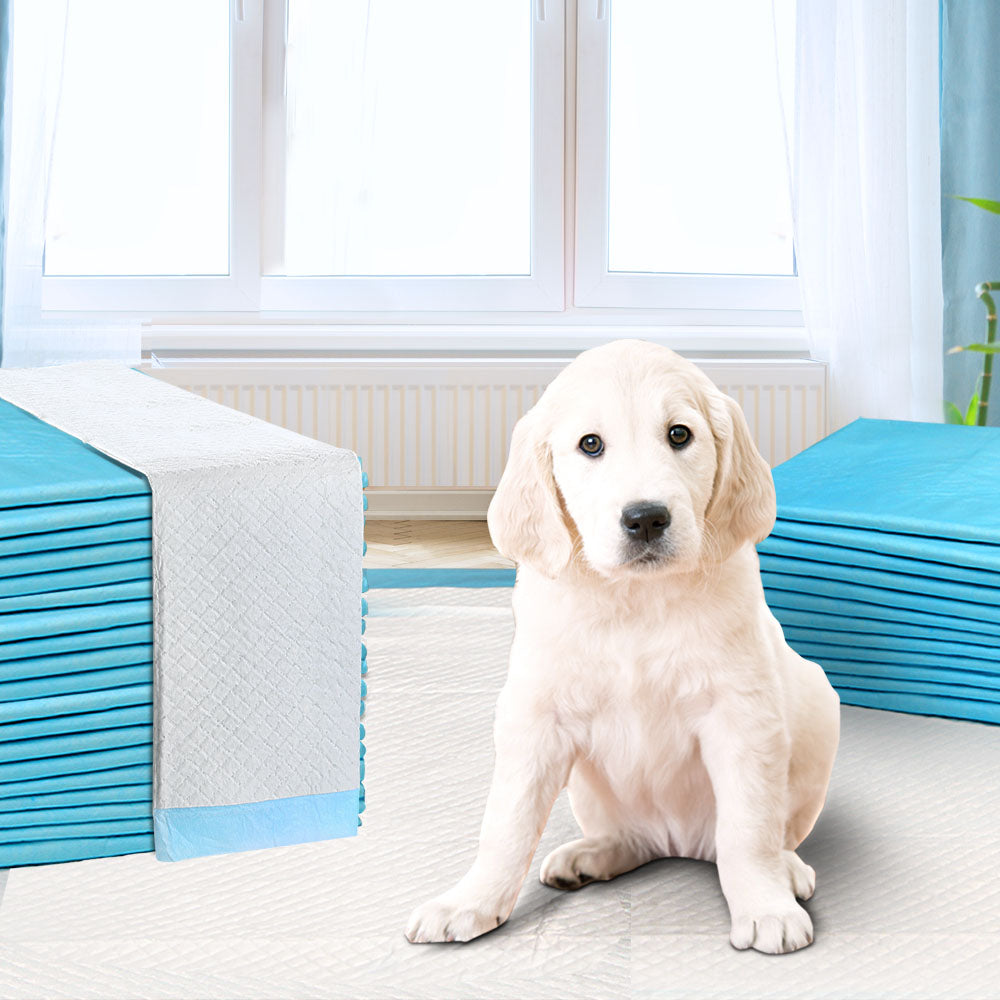 200pcs Puppy Dog Pet Training Pads Cat Toilet 60 x 60cm Super Absorbent Indoor Disposable