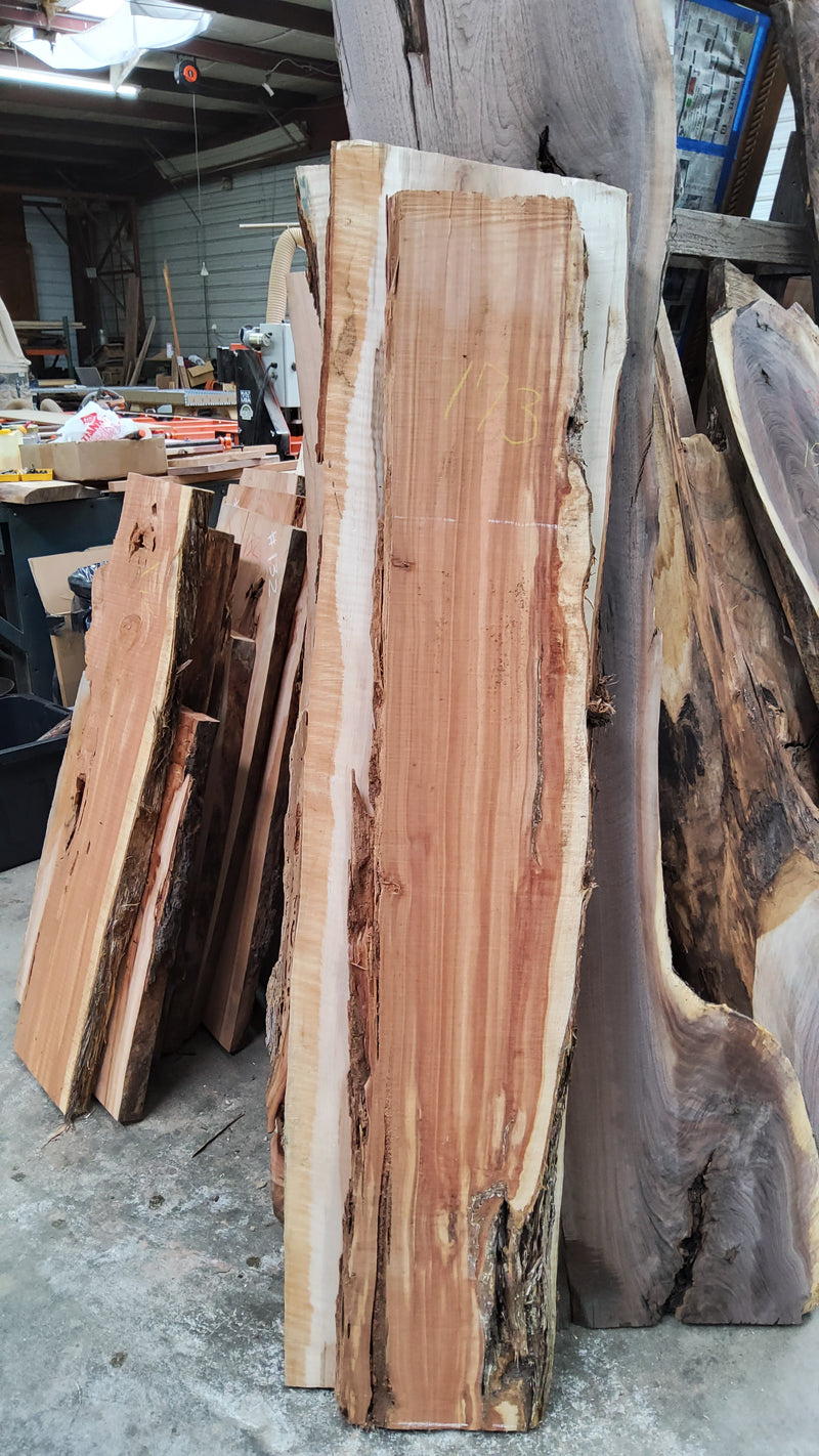Eastern Red Cedar Slab #173