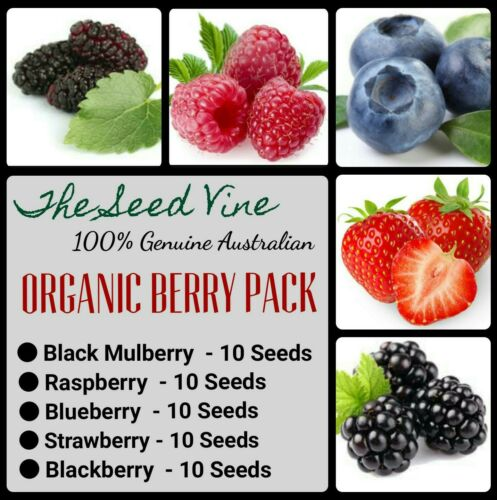 Mixed Organic Berry Seed Pack