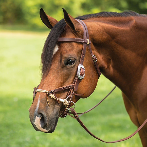 Western Bridles & Headstalls