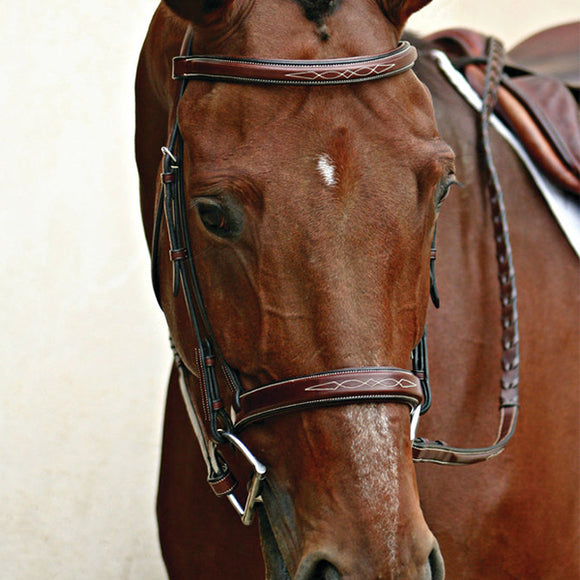 English Bridles & Reins