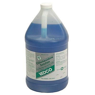 Generic Chlorhexidine Solution, Gallon