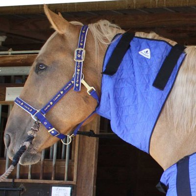 HyperKewl Horse Neck Cooler, Medium