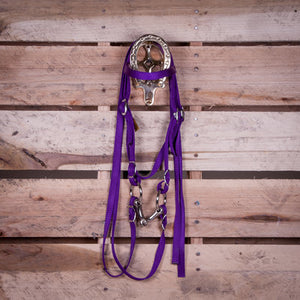 Miniature Horse Headstall with Bit & Reins