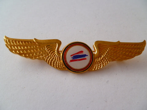 AIRLINE WING   1 2 go airline  gold  metal