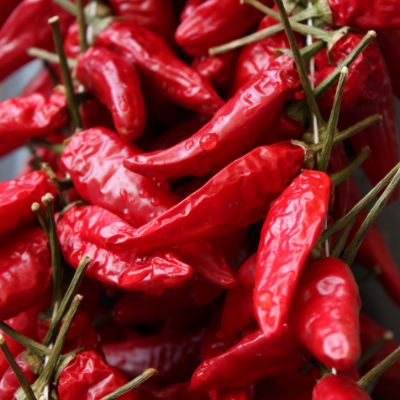calabrian chili peppers calabrian peppers imported italian food peppers Italian food wholesale