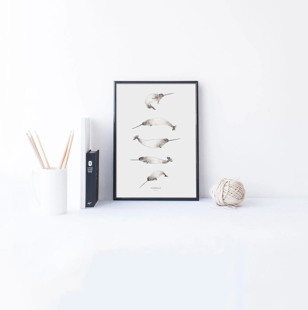 Narwhals Print