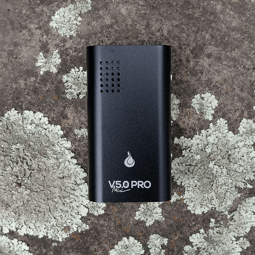 Buy a herb vape like Flowermate V5.0S Pro Mini Herb Vaporizer online in NZ from VapeMate NZ. Keep it high!
