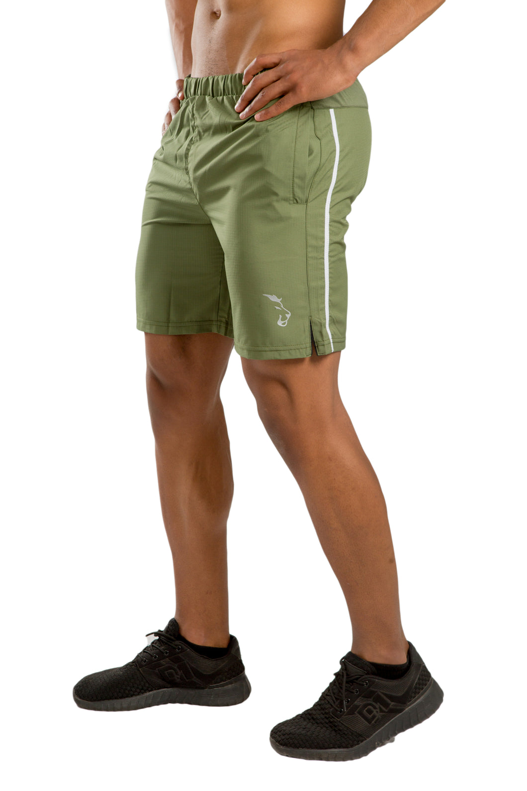 Lionz perforated short - green