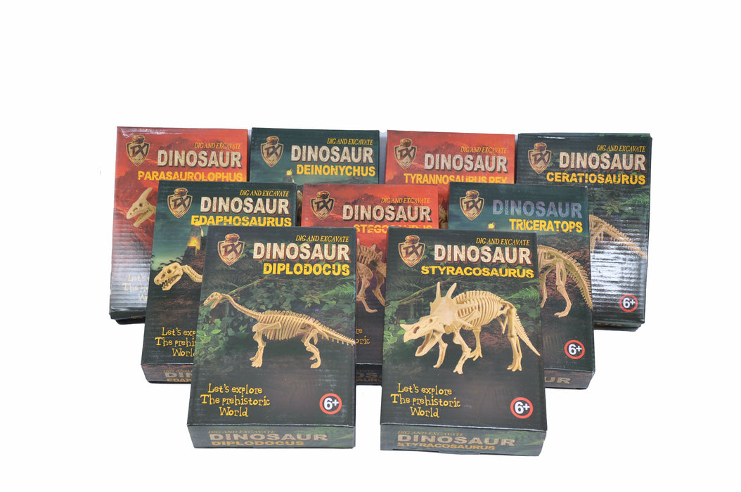 Large DIY Excavation Dinosaur Kit Box Package 1