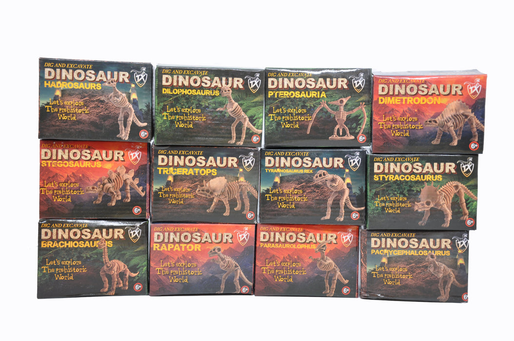 Small DIY Excavation Dinosaur Kit Box Package 1