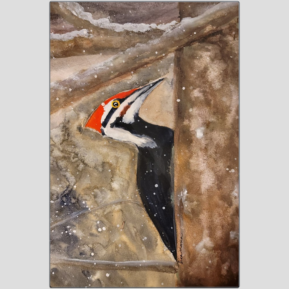 Pileated Woodpecker in the Snow Metal Print
