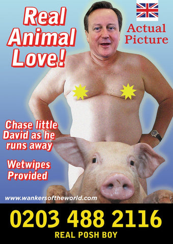 Political Whore Poster - Cameron