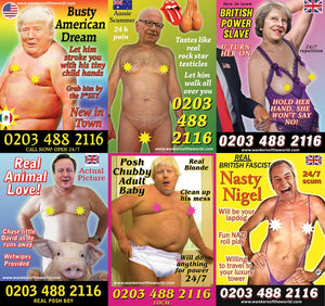 Political whores flyer pack