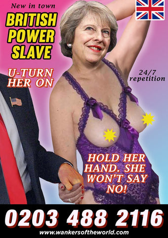 Political Whore Poster - May