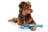 Neoprene Leash - Snoopy