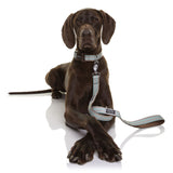 Neoprene Leash - Benji