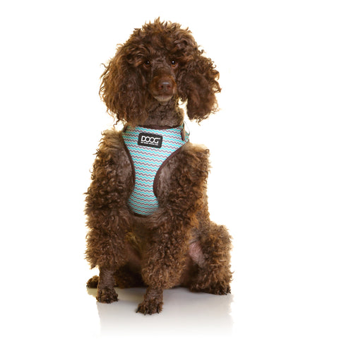 Neoflex Soft Harness - BENJI