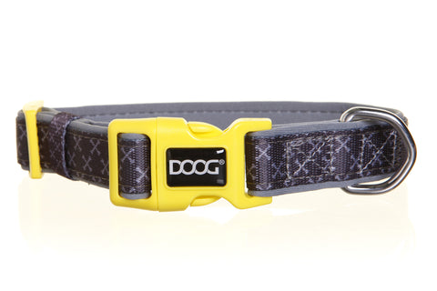 Neoprene Collar - Odie