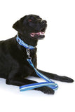 Neoprene Dog Lead - Pluto