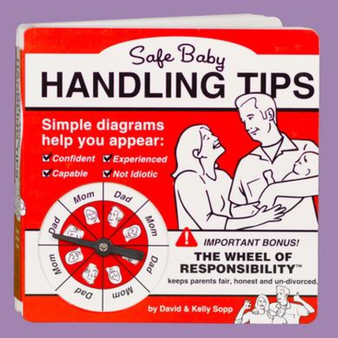 Safe Baby Handling Tips Book