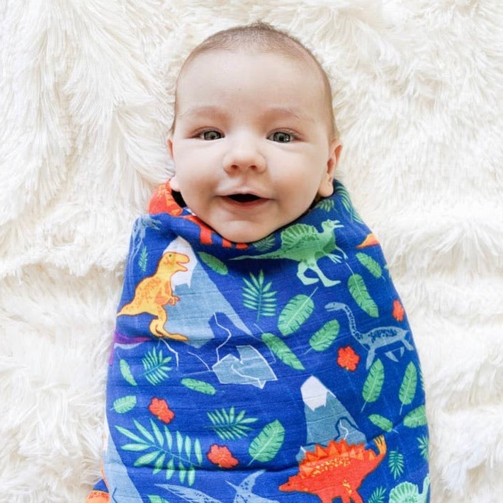 Rainbow Dinosaurs Swaddle Blanket
