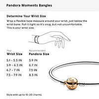 Pandora Jewelry Bangle Charm Sterling Silver and 14K Yellow Gold Bracelet, 8.3""