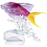 SWAROVSKI Anthias Fish, Clear