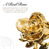 Forever Rose, a Genuine, One of a Kind, Real Rose, Hand Dipped to Last a Lifetime (24k Gold)