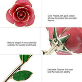 Gomyhom Rose Purple Love Forever Long Stem Gold Foil Trim Rose Flower with Bracket Room Decor for Valentine's Day & Mother's Day & Anniversary (Pink)