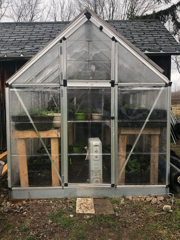 Greenhouse-plant-growing
