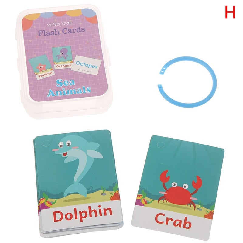 Sea Animal Flash Cards