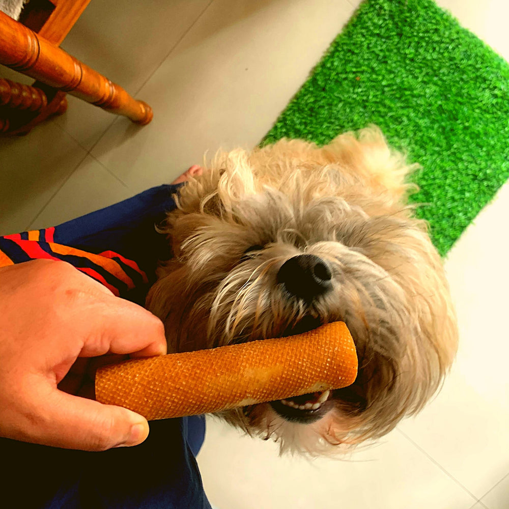 Yalk Milk Chew Sticks for Dogs - Dogs Dream Food