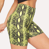 Snake Print High Waist Shorts - Fashion Bug Online