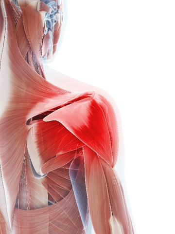 Frozen Shoulder Therapy in Singapore Orchard