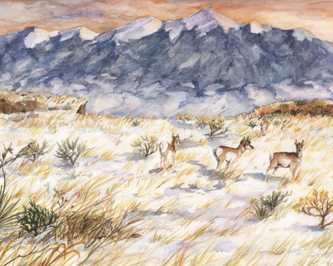 Pikes Peak Region Watercolor Print by Artist Bonnie Waugh available in the History Colorado Shop