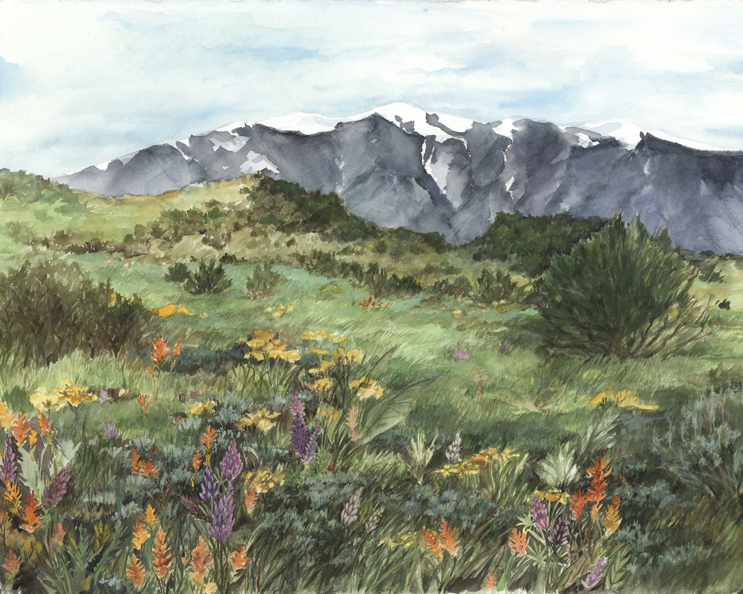 Spanish Peaks Spring Watercolor Print by Artist Bonnie Waugh available in the History Colorado Shop