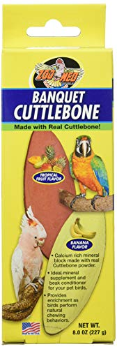 Zoo Med Banquet Cuttlebone - Large,Black