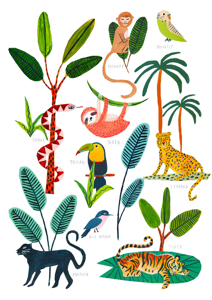 Animals of the Rainforest - Amber Davenport
