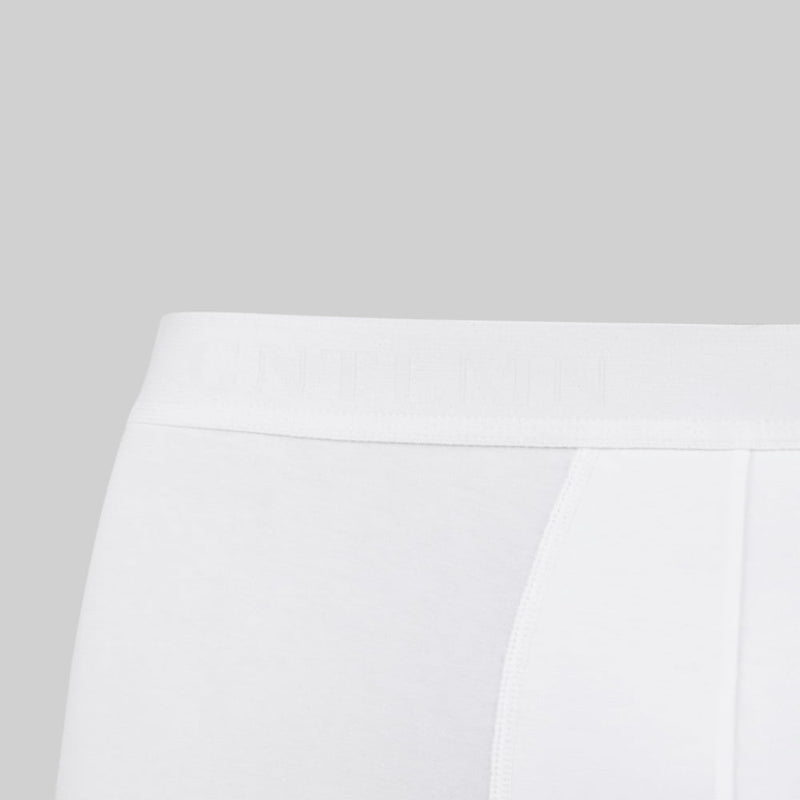 closeup of waistband of white boxer briefs - gntlmn in ghost writing